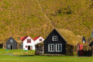 A village Skougar. Iceland