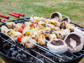 Barbecuing chicken, vegetables and champignon on spear over char