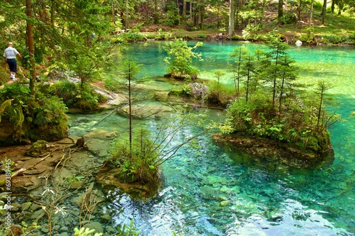 canvas print picture Spring of Kamnik Bistrica, Slovenia (summer 2014)