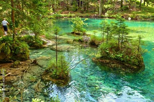 Spring of Kamnik Bistrica, Slovenia (summer 2014) - 69389445