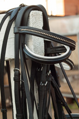 several bridles on a white column