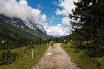 Wanderweg ©yvonneweis