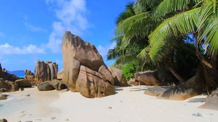 Plage tropicale et palmiers