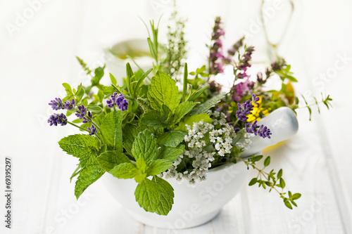 Fototapeta Fresh herbs in mortar