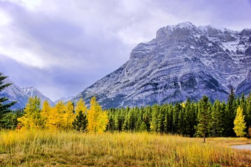 Cool day in the Rocky Mountains with fall foliage