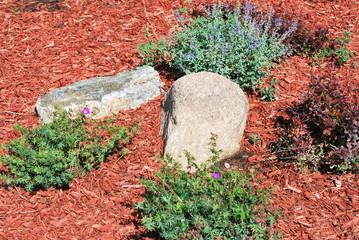 Rock garden.