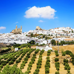Olvera, beautiful mountain village located in Cadiz, Spain.