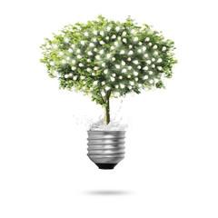 Tree Light bulb isolated