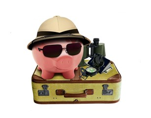 Piggy on Holiday