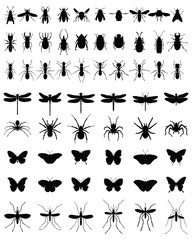 Black silhouettes of insects on white background, vector