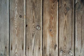 Texture di legno umido