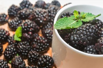 Blackberries with mint  in cup, macro.
