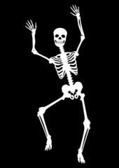 Menschliches Skelett, tanzend, Tanz, weiß auf schwarz, Vektor