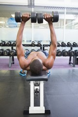 Shirtless man exercising with dumbbells in gym