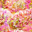 Seamless pattern, peony flowers. Vector, EPS10