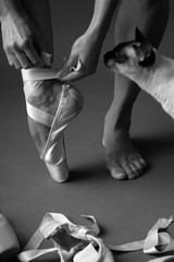 Attraction to ballet, monochrome