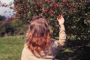 Young woman picking berries