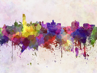 Albany skyline in watercolor background