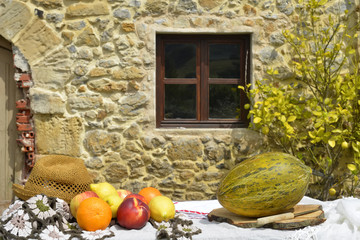 Still life of fruit and rustic house