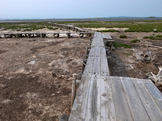 野付半島の遊歩道