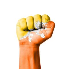 Fist of Bhutan flag painted