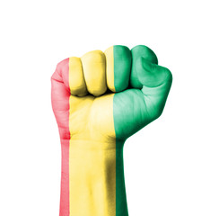 Fist of Guinea flag painted