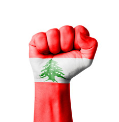 Fist of Lebanon flag painted