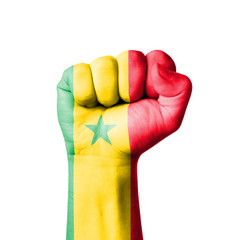 Fist of Senegal flag painted