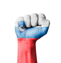 Fist of Slovenia flag painted