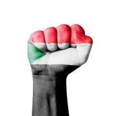 Fist of Sudan flag painted