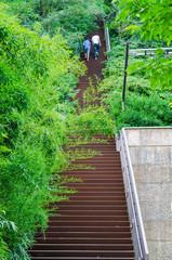 Escalier de Fourvière, Lyon, France