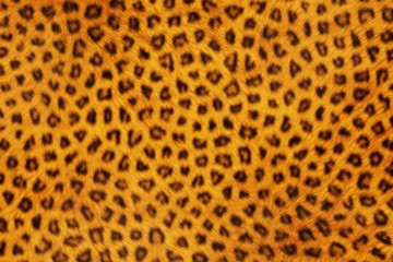 Fur Animal Textures, Leopard small