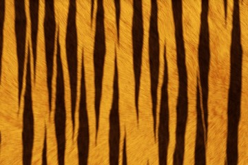 Fur Animal Textures, Tiger big