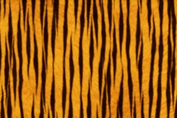 Fur Animal Textures, Tiger small