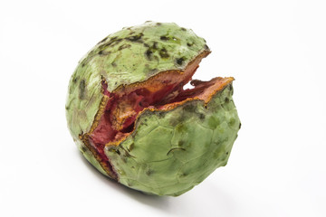 Exotic fruit annona, on white background