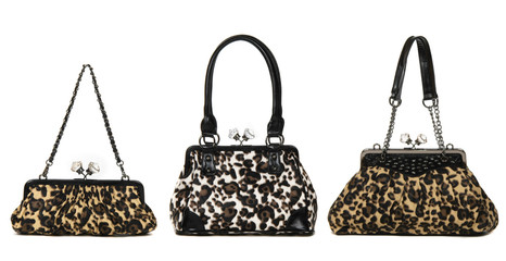 set of leopard women bags  on white background