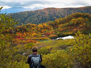 大雪山高原温泉沼巡りコースの紅葉と高原沼
