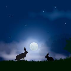 Faune - Lièvre et lapin au clair de lune
