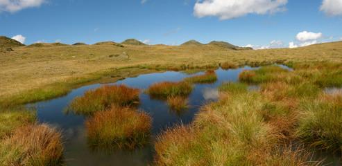 Moor im Hochgebirge  Panorama