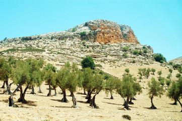 Mountainous landscape in Morocco