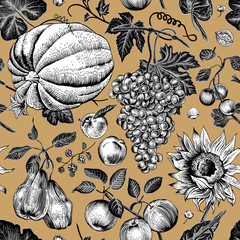 Autumn harvest. Pumpkin, sunflower, nuts and fruit.