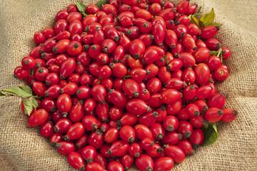 Dog Rose Fruits On Jute - DSC1561