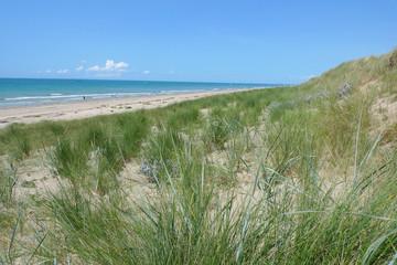 dunes de Normandie