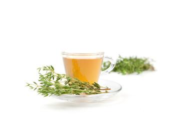 Thymiantee in Teetasse mit frischen Kräutern, weißer Hintergrund
