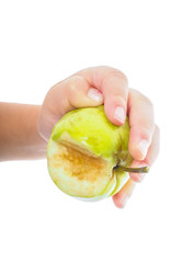 Little childs hand holding an unripe green apple towards white