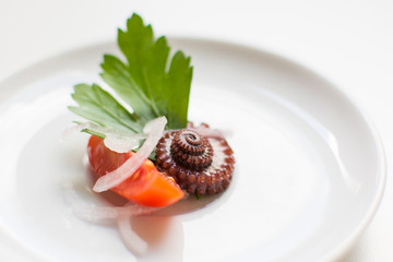 Octopus salad on a white plate