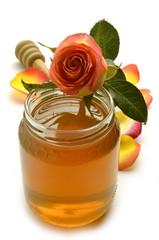 Honey Miele Honig Miel Miód Rose Rosa Róża Rosen Rosier
