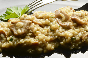 Risotto con i funghi Rice with mushrooms 蘑菇烩饭 Expo Milano 2015