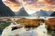 Milford Sound & Reflections