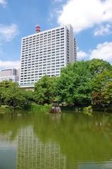 都心のビルと池
